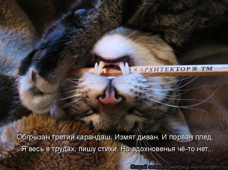 Спящий рот фото 5 фотография
