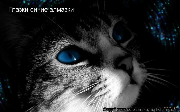 Котоматрица: Глазки-синие алмазки
