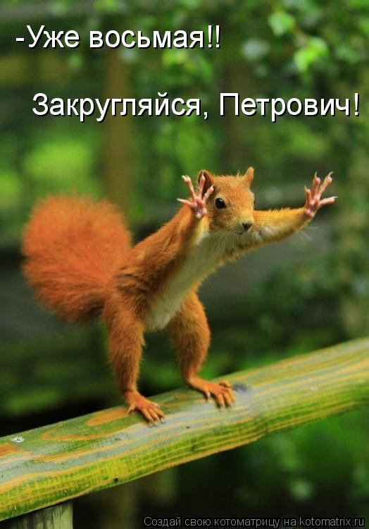 Котоматрица: -Уже восьмая!! Закругляйся, Петрович!