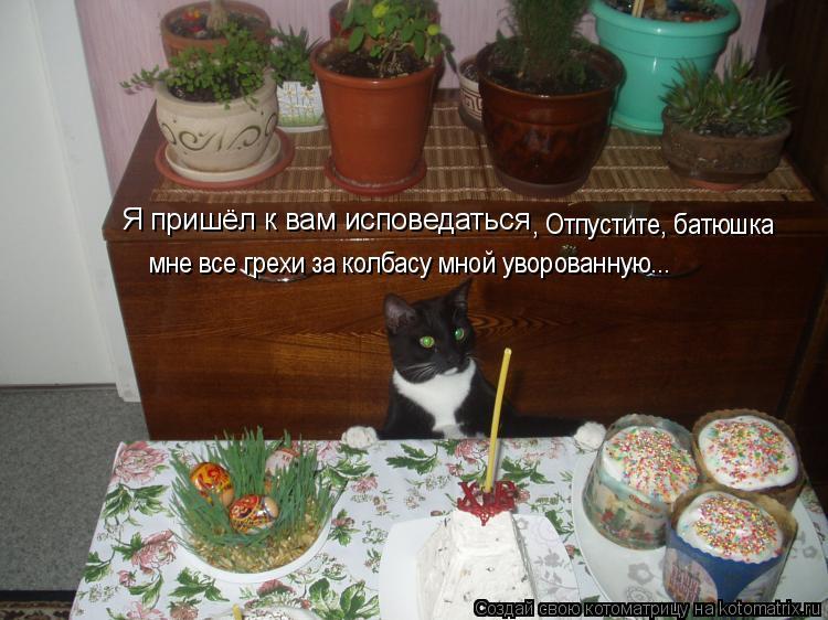 Котоматрица: Я пришёл к вам исповедаться , Отпустите, батюшка  мне все грехи за колбасу мной уворованную...