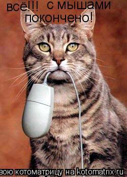 Котоматрица: всё!!! с мышами покончено!