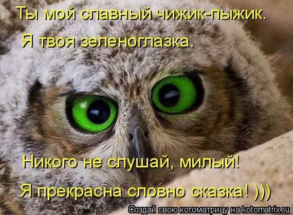 Котоматрица: Ты мой славный чижик-пыжик.  Я твоя зеленоглазка.  Никого не слушай, милый!  Я прекрасна словно сказка! )))