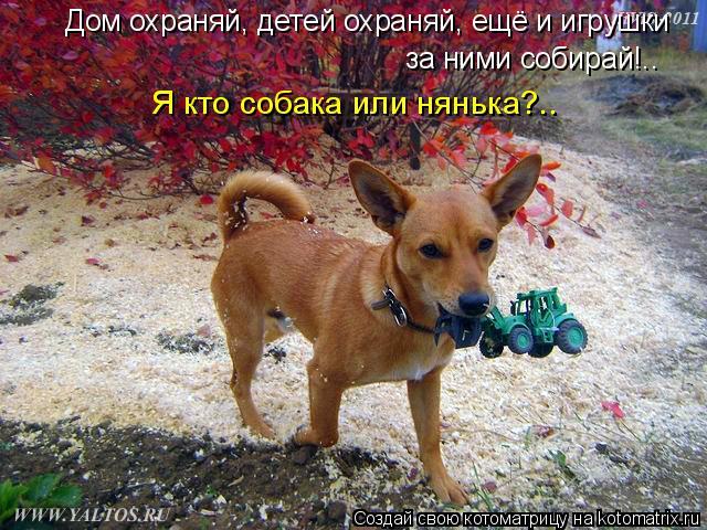 Котоматрица: Дом охраняй, детей охраняй, ещё и игрушки за ними собирай!.. Я кто собака или нянька?..