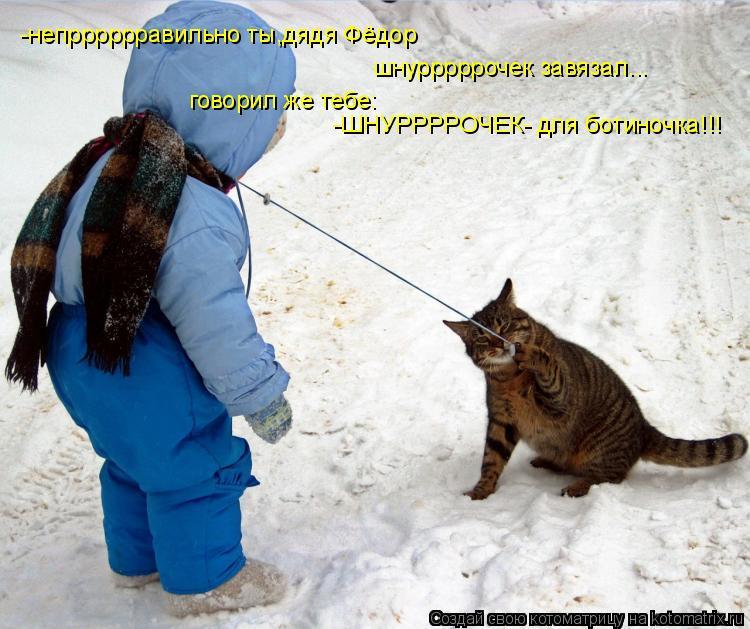 Котоматрица: -непрррррравильно ты,дядя Фёдор шнурррррочек завязал... говорил же тебе: -ШНУРРРРОЧЕК- для ботиночка!!!