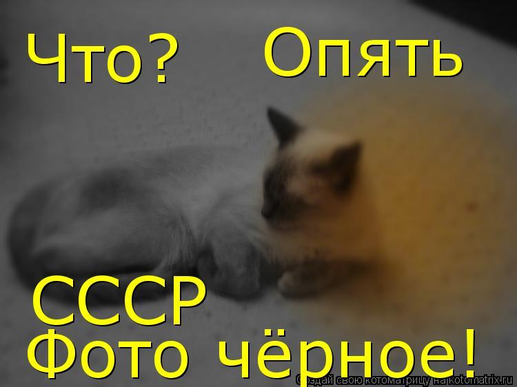 Котоматрица: Что? Опять  СССР  Фото чёрное!