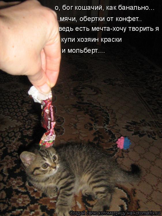 Котоматрица: о, бог кошачий, как банально... мячи, обертки от конфет.. ведь есть мечта-хочу творить я купи хозяин краски и мольберт....