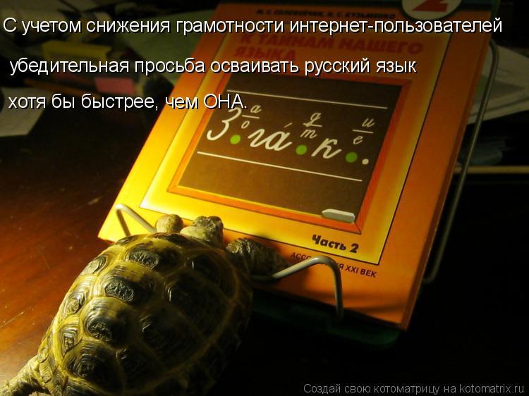 Котоматрица: С учетом снижения грамотности интернет-пользователей убедительная просьба осваивать русский язык  хотя бы быстрее, чем ОНА.