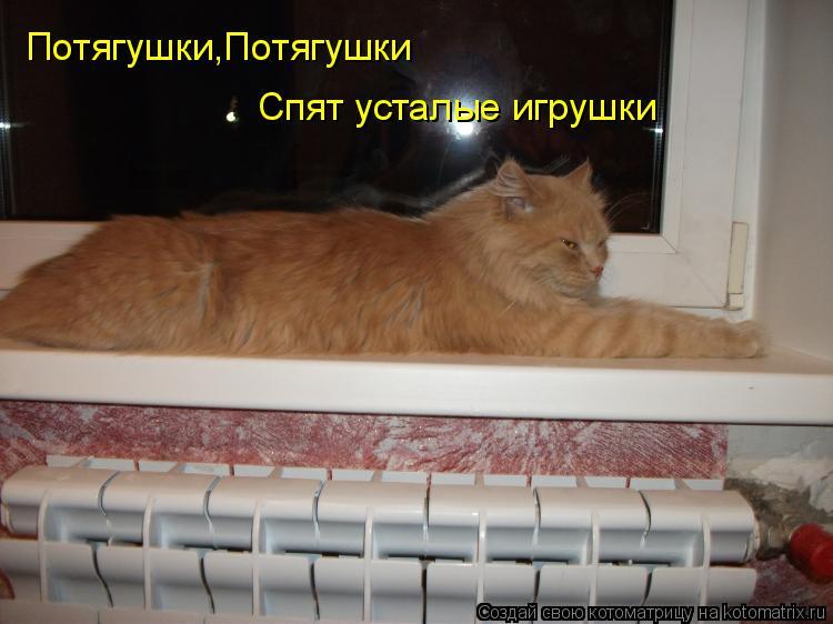 Котоматрица: Потягушки,Потягушки Спят усталые игрушки