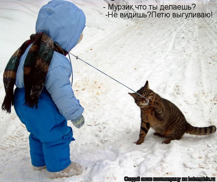 Котоматрица: - Мурзик,что ты делаешь? -Не видишь? Петю выгуливаю!