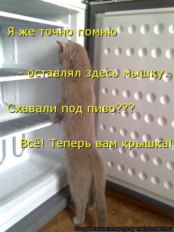 Котоматрица: Я же точно помню  - оставлял здесь мышку... Схавали под пиво??? Всё! Теперь вам крышка!