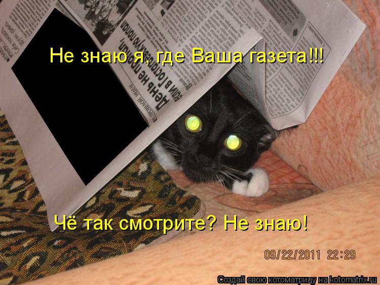 Котоматрица: Не знаю я, где Ваша газета!!! Чё так смотрите? Не знаю!