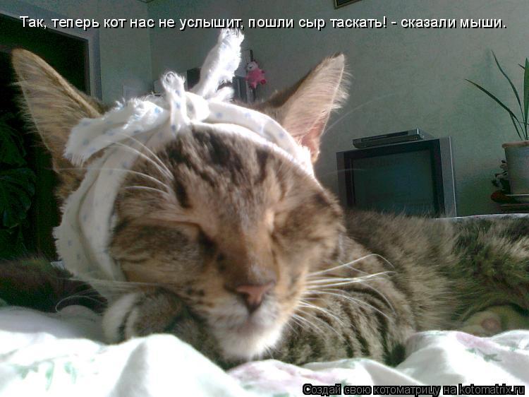 Котоматрица: Так, теперь кот нас не услышит, пошли сыр таскать! - сказали мыши.