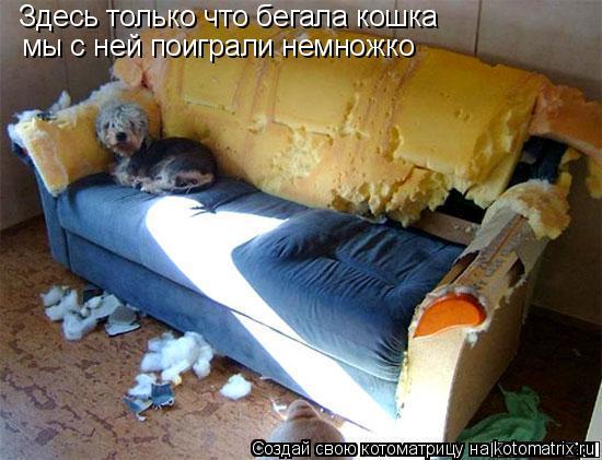 Котоматрица: Здесь только что бегала кошка мы с ней поиграли немножко