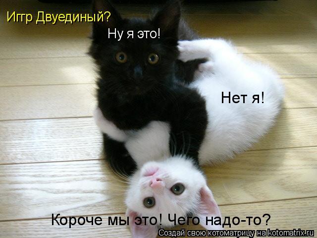 http://kotomatrix.ru/images/lolz/2011/09/25/vS.jpg