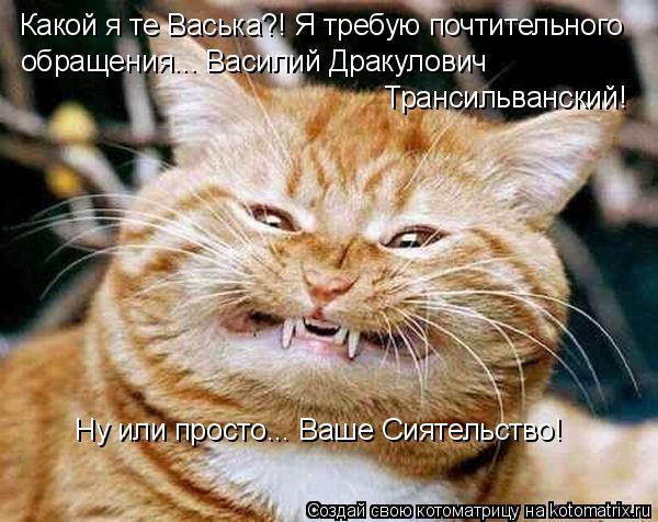 Котоматрица: Какой я те Васька?! Я требую почтительного обращения... Василий Дракулович  Трансильванский! Ну или просто... Ваше Сиятельство!