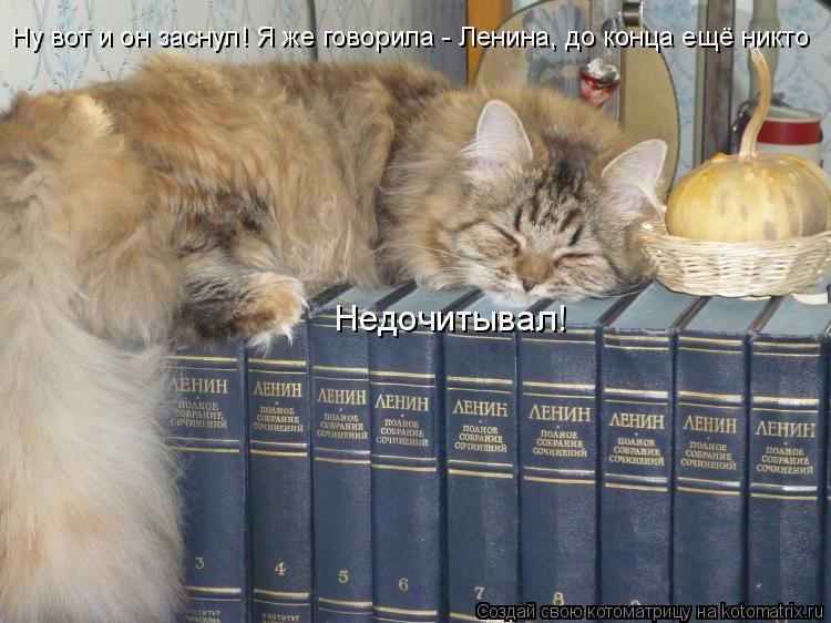 Котоматрица: Ну вот и он заснул! Я же говорила - Ленина, до конца ещё никто Недочитывал!