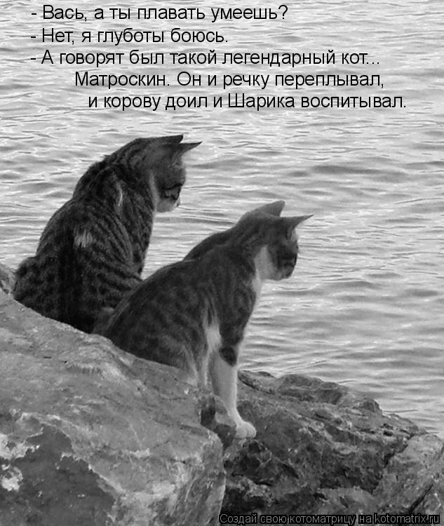 Котоматрица: - Вась, а ты плавать умеешь? - Нет, я глуботы боюсь. - А говорят был такой легендарный кот... Матроскин. Он и речку переплывал, и корову доил и Шар
