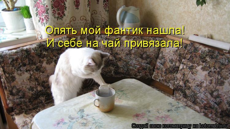 Котоматрица - Опять мой фантик нашла! И себе на чай привязала!