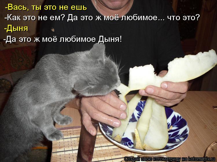 Котоматрица - -Вась, ты это не ешь -Как это не ем? Да это ж моё любимое... что это?