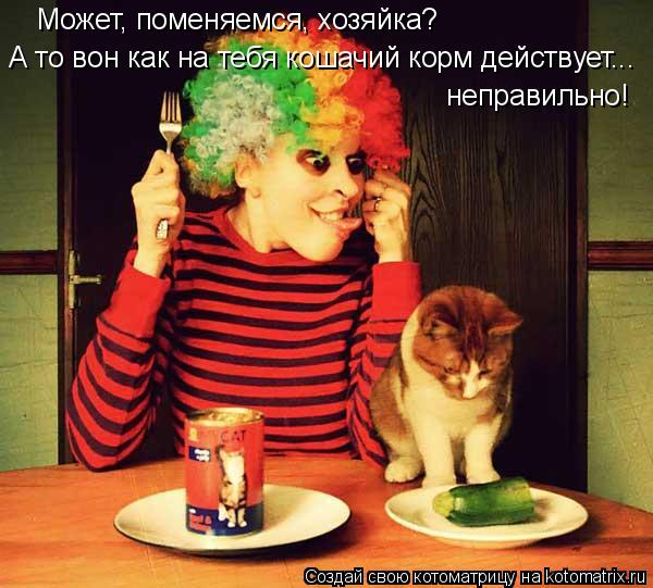 Котоматрица: Может, поменяемся, хозяйка? А то вон как на тебя кошачий корм действует... неправильно!