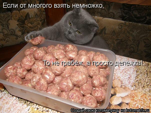 Котоматрица: Если от многого взять немножко, То не грабёж, а просто делёжка!..