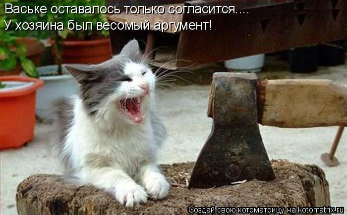 Котоматрица: Ваське оставалось только согласится.... У хозяина был весомый аргумент!