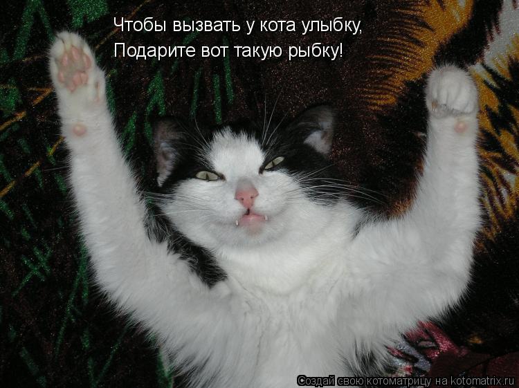 Котоматрица: Чтобы вызвать у кота улыбку, Подарите вот такую рыбку!