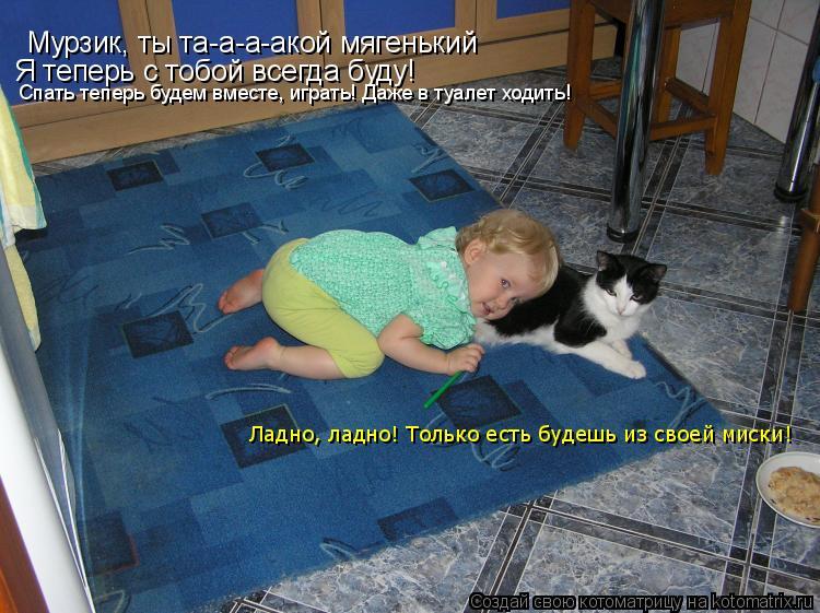 Котоматрица: Мурзик, ты та-а-а-акой мягенький Я теперь с тобой всегда буду! Спать теперь будем вместе, играть! Даже в туалет ходить! Ладно, ладно! Только ес