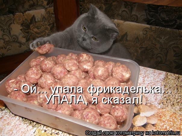 http://kotomatrix.ru/images/lolz/2011/09/26/1000867.jpg