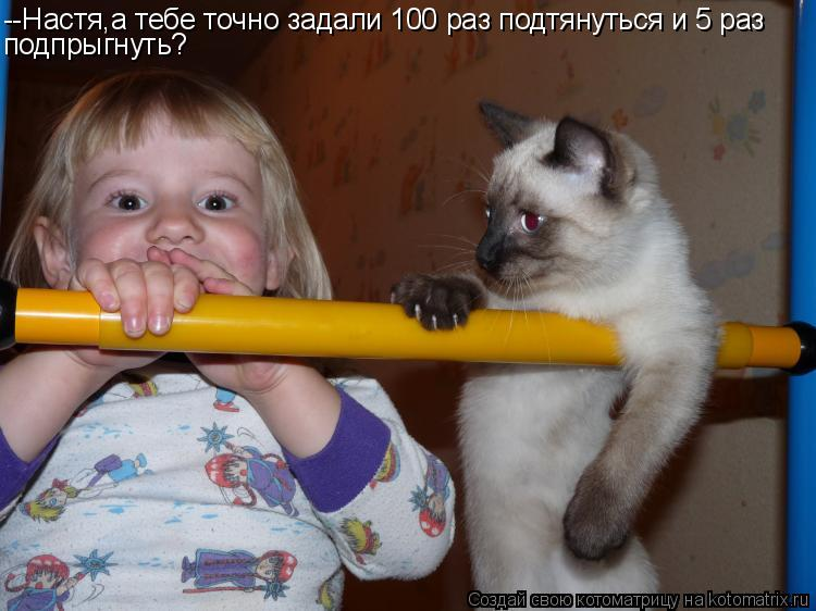 Котоматрица: --Настя,а тебе точно задали 100 раз подтянуться и 5 раз подпрыгнуть?