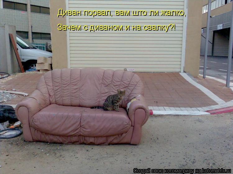 Котоматрица: Диван порвал, вам што ли жалко, Зачем с диваном и на свалку?!