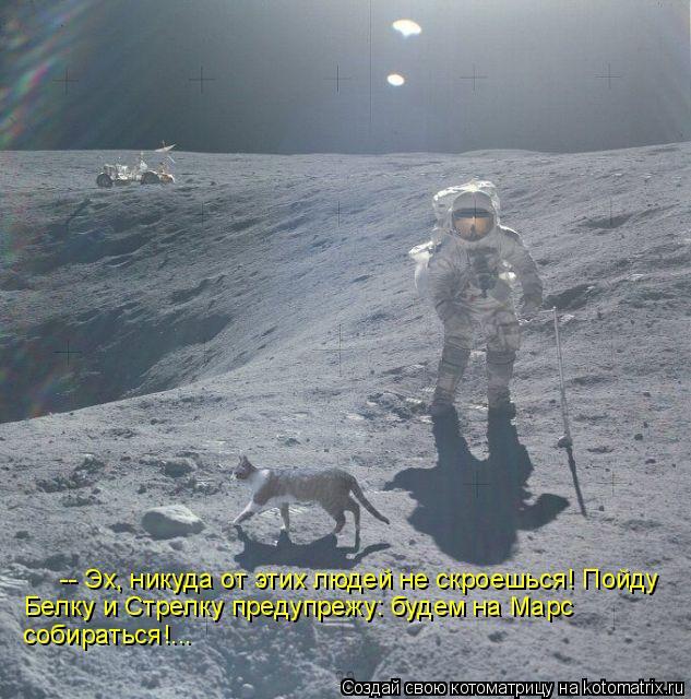 Котоматрица: -- Эх, никуда от этих людей не скроешься! Пойду  Белку и Стрелку предупрежу: будем на Марс  собираться!...