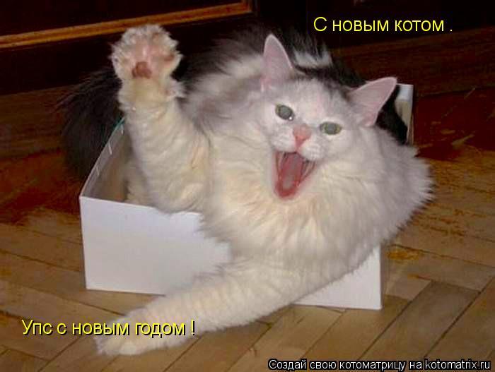 Котоматрица: С новым котом .  Упс с новым годом !