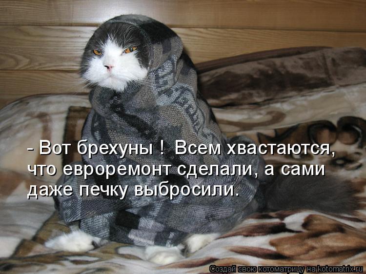 Котоматрица: - Вот брехуны !  Всем хвастаются, что евроремонт сделали, а сами даже печку выбросили.