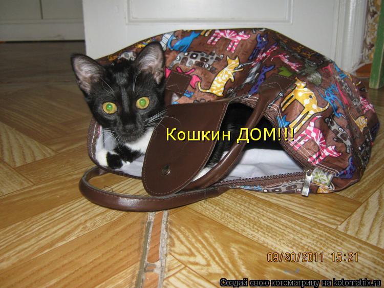 Котоматрица: Кошкин ДОМ!!!