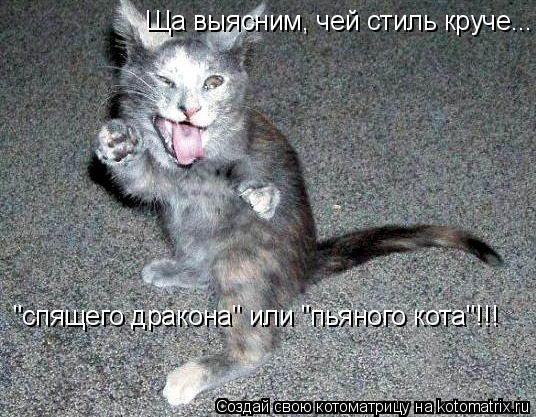 """Котоматрица: Ща выясним, чей стиль круче... """"спящего дракона"""" или """"пьяного кота""""!!!"""