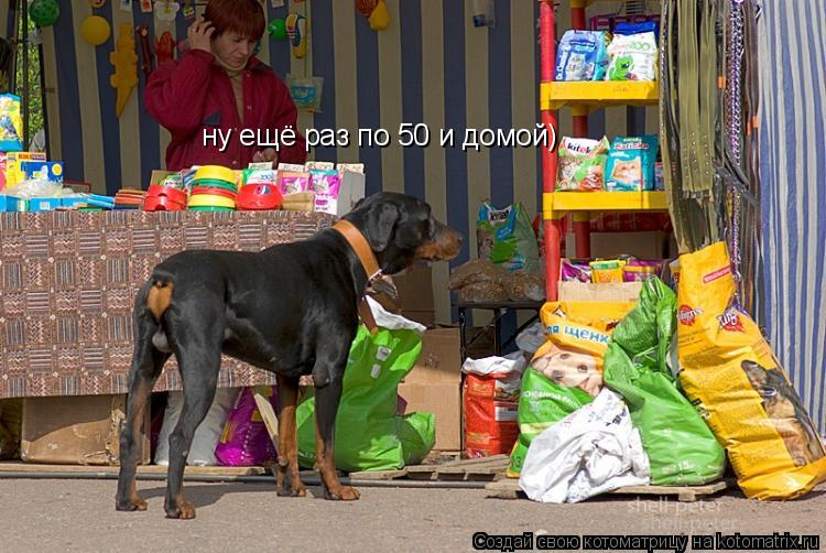 Котоматрица: ну ещё раз по 50 и домой)