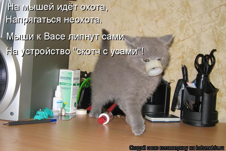 Котоматрица - На мышей идёт охота, Напрягаться неохота. Мыши к Васе липнут сами На у