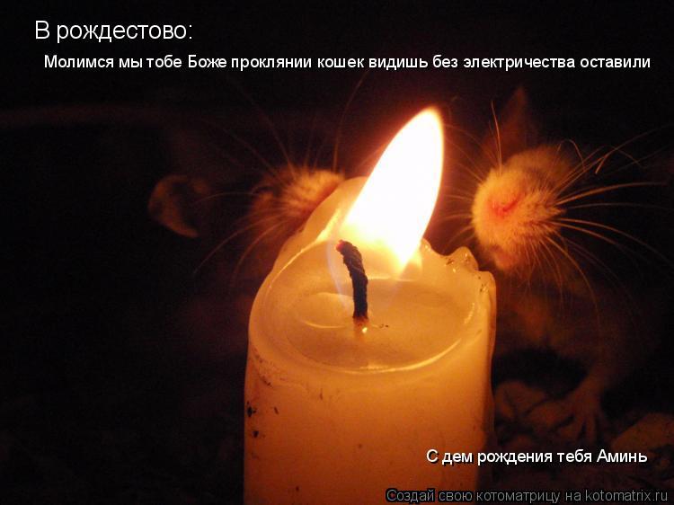 Котоматрица: В рождестово: Молимся мы тобе Боже проклянии кошек видишь без электричества оставили С дем рождения тебя Аминь