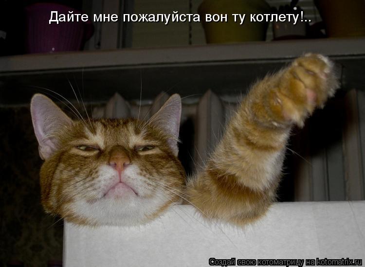 Котоматрица: Дайте мне пожалуйста вон ту котлету!..