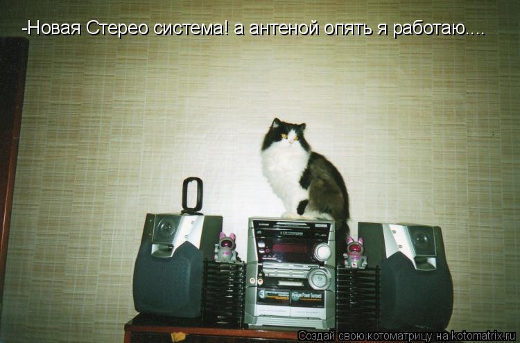 Котоматрица: -Новая Стерео система! а антеной опять я работаю....