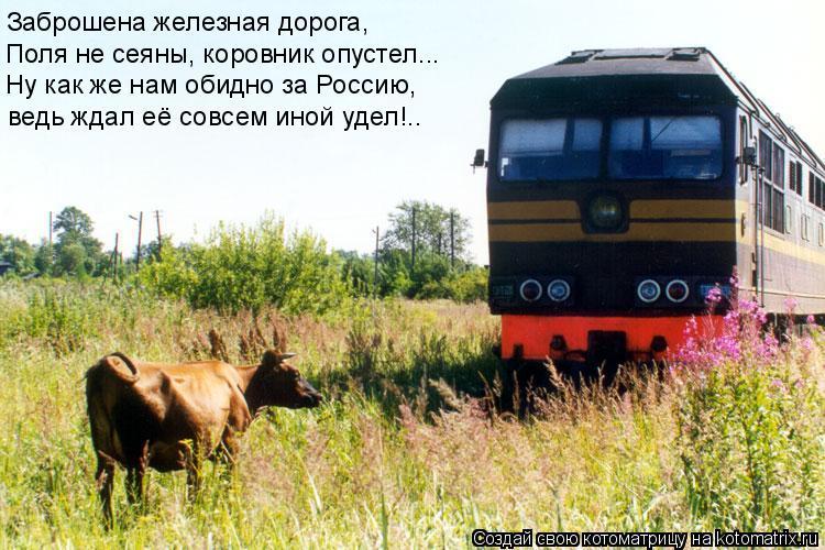 Котоматрица: Заброшена железная дорога, Поля не сеяны, коровник опустел... Ну как же нам обидно за Россию, ведь ждал её совсем иной удел!..