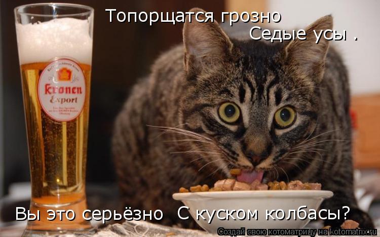 Котоматрица: Топорщатся грозно Седые усы – Вы это серьёзно С куском колбасы?