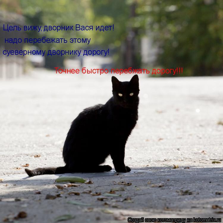 Котоматрица: Цель вижу, дворник Вася идет! надо перебежать этому суеверному дворнику дорогу! Точнее быстро перебжать дорогу!!!
