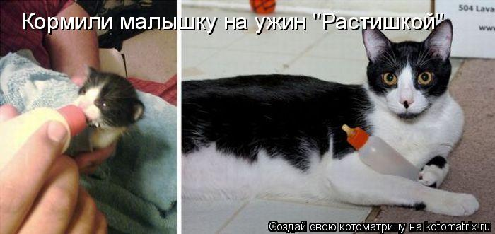 """Котоматрица - Кормили малышку на ужин """"Растишкой"""""""