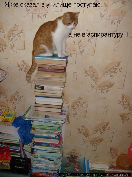 Котоматрица: -Я же сказал в училище поступаю.. а не в аспирантуру!!!
