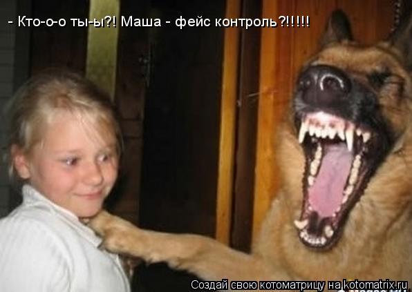 Котоматрица: - Кто-о-о ты-ы?! Маша - фейс контроль?!!!!!