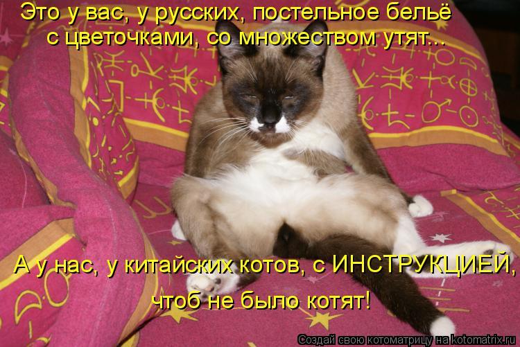 Котоматрица - Это у вас, у русских, постельное бельё  с цветочками, со множеством ут