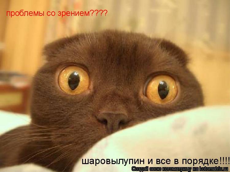 Котоматрица: проблемы со зрением???? шаровылупин и все в порядке!!!!