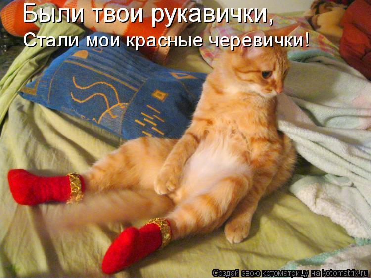 Котоматрица: Были твои рукавички, Стали мои красные черевички!